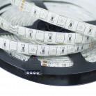 Светодиодная лента RGB: SMD5050-60LED-IP33-24в