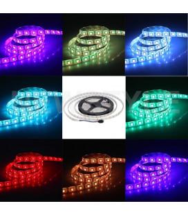 Светодиодная лента SMD5050-60LED-RGB-12V Стандарт 5м.