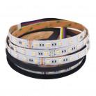 Светодиодная лента SMD 5050-60LED-IP33-12V RGB+CCT