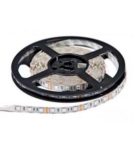 Светодиодная лента SMD5050-60LED-RGB-IP33-12  econom