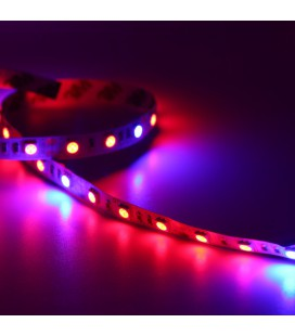 Фито лента SMD5050-60LED-IP20-12V ( 5 синих+1 красный )