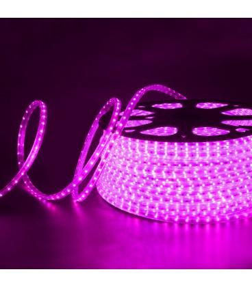 Светодиодная лента розовая SPT-3528 60LED220V