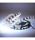 Сверхяркая светодиодная лента High lum SMD 5630-60LED-IP33-12V LUX 5м.