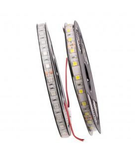 Светодиодная лента: SMD5050-60LED-IP65-24в