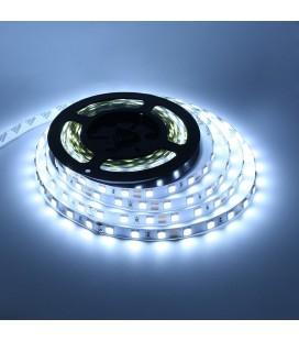 Светодиодная лента SMD5054-60LED-12V LUX (белый)