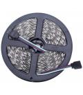 Светодиодная лента SMD5050-60LED-RGB-12V Double line standart 5м.
