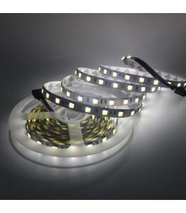 Светодиодная лента SMD 5025, 60 диодов/метр, Double line стандарт, 12 В, цвет: белый+теплый белый, IP33 5м.