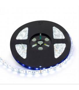 Светодиодная лента SMD5050-60LED--12V Double line 5м.