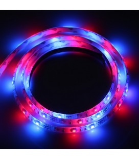 Светодиодная лента RGB c боксом для батареек